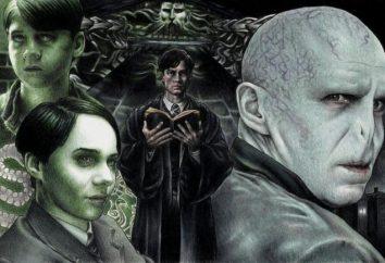 Wer spielt Lord Voldemort in den Harry-Potter-Filmen?