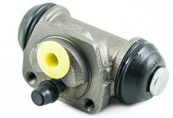 Cylindre de frein arrière. Remplacement du cylindre arrière