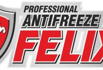 Antigel « Felix »: les spécifications techniques et composition