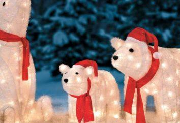 Gdzie spocząć na Nowy Rok niedrogie. Gdzie można odpocząć na Boże Narodzenie i Nowy Rok