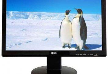 Główne rodzaje monitorów. Rodzaje nowoczesnych monitorów