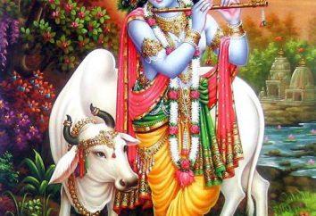 Krishna – è quella di una divinità? Chi sono gli Hare Krishna