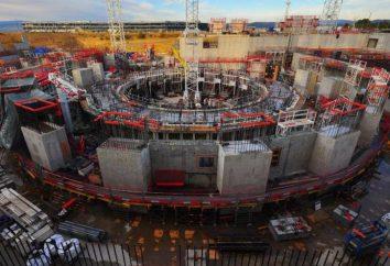 I reattori a fusione del mondo. Il primo reattore a fusione