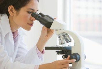 Gérontologie – qu'est-ce? Institut de recherche en gérontologie. Les succès de Gérontologie
