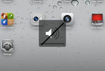 Suono scomparso su iPad – cosa fare? Come restituire il suono sul tablet
