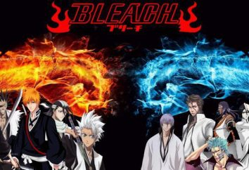 Anime Bleach: continuación posible?