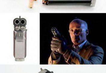Dwojaką funkcje pistolet i najlepsze modele