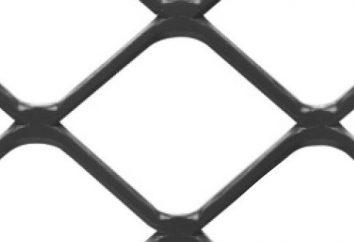 Une clôture en treillis soudés: quels sont les avantages de cette conception?