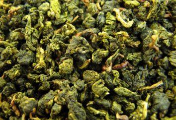 """Il tè verde """"Oolong Milk"""" – proprietà e controindicazioni utili"""
