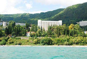 """""""Bagripsh"""" – una pensione in un angolo accogliente di Abkhazia"""