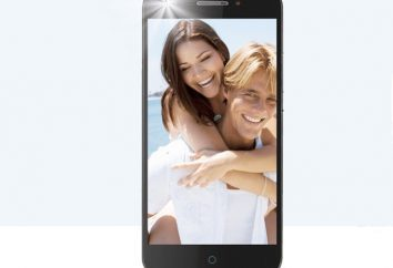 Smartphone Zte Blade A813: un vistazo, especificaciones, opiniones