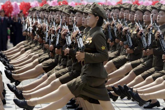 militär nordkorea südkorea vergleich