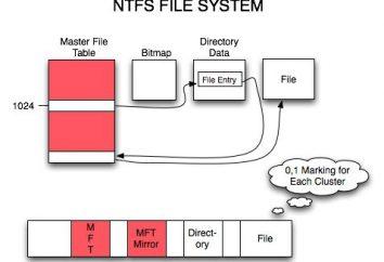 System plików – co to jest? System plików NTFS, FAT, RAW, UDF