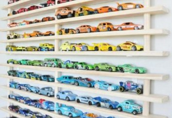 Confortable et beau: 13 idées de conception pour le stockage de jouets