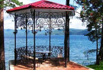 mobiliário de jardim da casa feita de metal decorar seu site