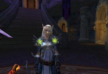 Haut Elfe dans l'histoire de Warcraft