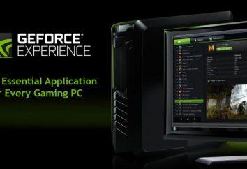 GeForce L'esperienza non si avvia – cosa fare?