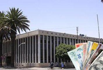 Dług i odpowiedzialność finansowa – co to jest? Wypełnianie zobowiązań