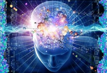 bases Psicofisiológicos de actividade do condutor. Fundamentos de motorista psicofisiologia de trabalho