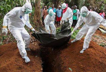 Wirus Ebola: metoda transmisji. Ebola: główne objawy