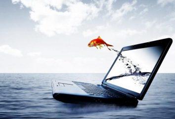 Jak skonfigurować laptopa?