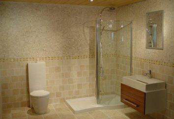 Wyposażona łazienka. Korzystny wanna, brodzik lub prysznic?