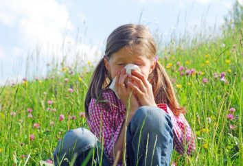 rhinite allergique: symptômes et traitement, Causes