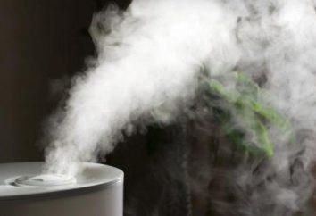 Traditionelle Luftbefeuchtern: Beschreibung, Preis und Kundenbewertungen