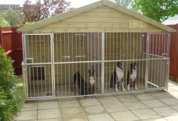 Woliera dla dużych psów z własnych rąk: cech, rysunków i zaleceń