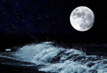 Cosa succede se la luna scompare? Quale effetto ha la Luna sulla Terra?