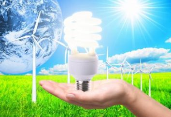 urządzeń dla domu energooszczędnym. Komentarze na temat urządzeń energooszczędnych. Jak zrobić urządzenie energooszczędne własnymi rękami