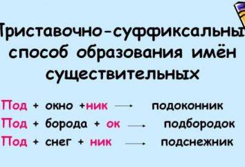 Como um prefixo-sufixo, as palavras são formadas: exemplos