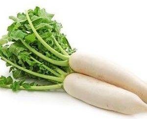 Daikon: recette de cuisine et propriétés végétales
