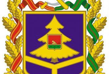 Bandiera e lo stemma della regione di Bryansk. Descrizione dei simboli