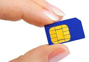 Co zrobić, gdy telefon nie widzi karty sim?