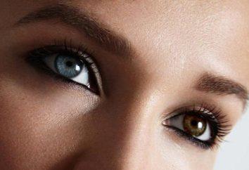 Qual è la struttura dell'occhio umano?
