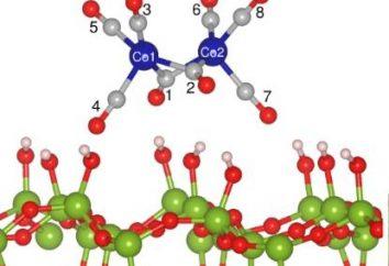 dissociazione elettrica: i fondamenti teorici dell'elettrochimica