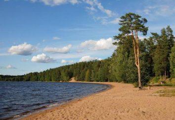 Anfahrt: See Schönheit. Leningrad Region anzeigen Mehr
