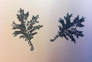 Goffratura – che cos'è? goffratura a caldo