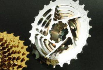 Tylna kaseta rower: opis, funkcje naprawy i wymiany