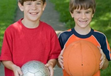 Jogo para um programa de acampamento de verão focada no desenvolvimento de integração e socialização das crianças