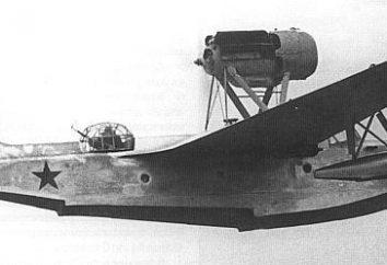 Aircraft dell'URSS durante la seconda guerra mondiale