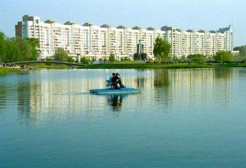 Rivière à Minsk Svisloch Loshitsa, taons