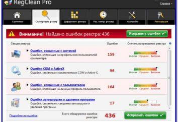 RegCleaner Pro: ¿Qué es este programa? Comentarios