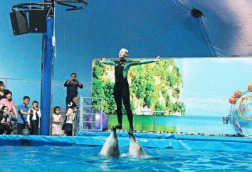 """Nemo"" – ein wunderbares Delphinarium in Almaty"