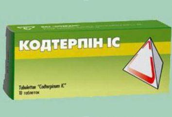 """Droga """"kodterpin"""": instruções de uso, descrição, composição e comentários"""