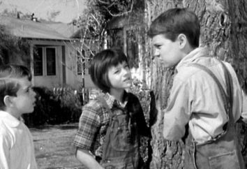 "Harper Lee ""To Kill a Mockingbird"": Resumen del capítulo"