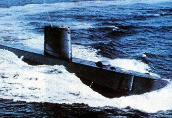 T-15 – torpille atomique: Caractéristiques