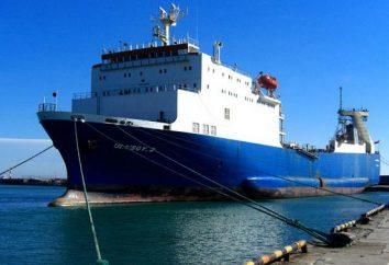 « Novorossiysk-Sébastopol » – ferry est pas la destination