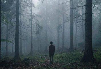 Comment écrire un essai sur le thème « La solitude » – la structure et la spécificité stylistique du travail